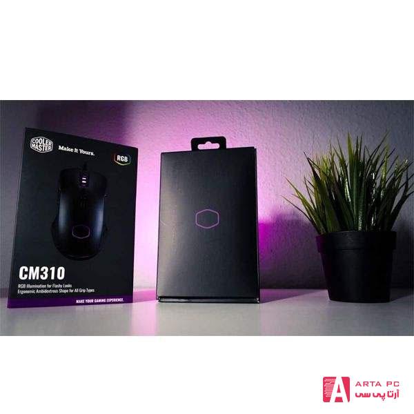 CM310